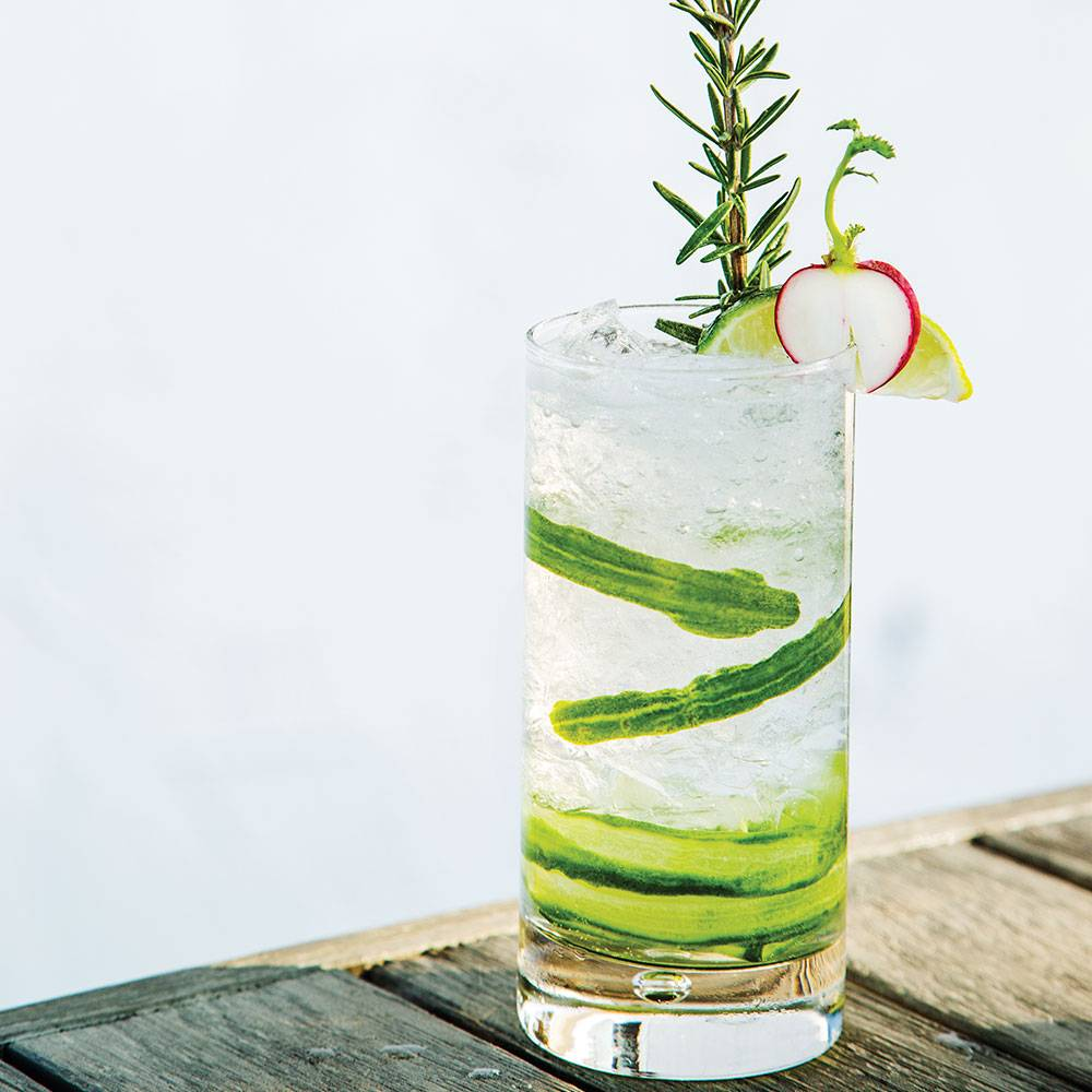Infused Rosemary Radish and Cucumber Gimlet