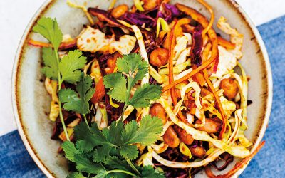 Tex-Mex Infused Pinto Bean Slaw