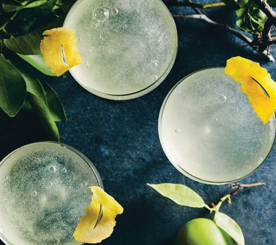 Terpenes Infused Citrus Cocktails