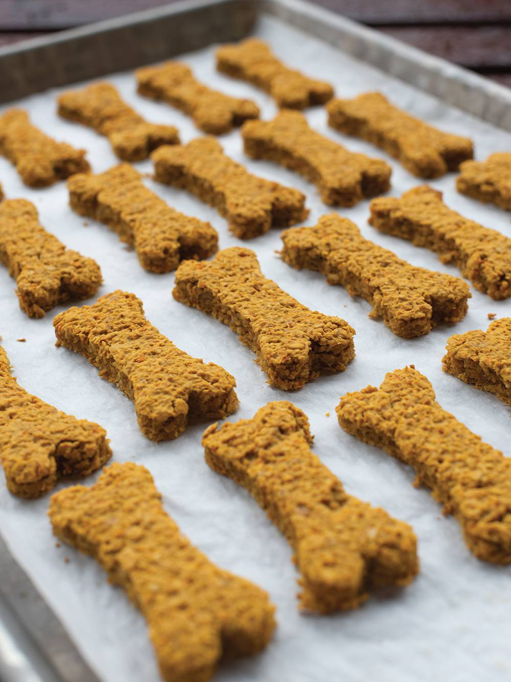 Infused Dog Biscuits